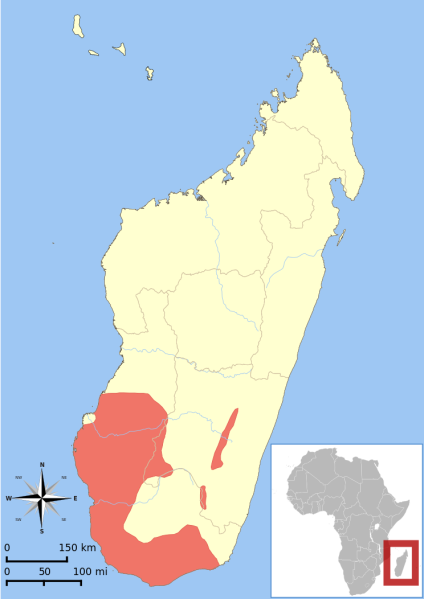 Lemur_catta_range_map.svg