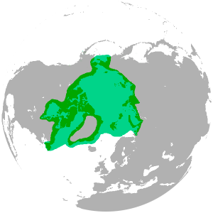 Polar_bear_range_map